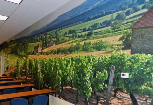 WM045 - Custom Wall Mural for Interior Design